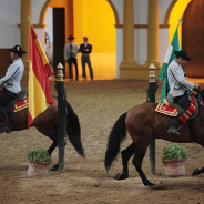 Tour 3 – Jerez Wijnhuizen and Royal School of Equestrian Art