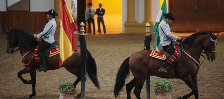 Tour 3 – Jerez Wineries and Royal School of Equestrian Art