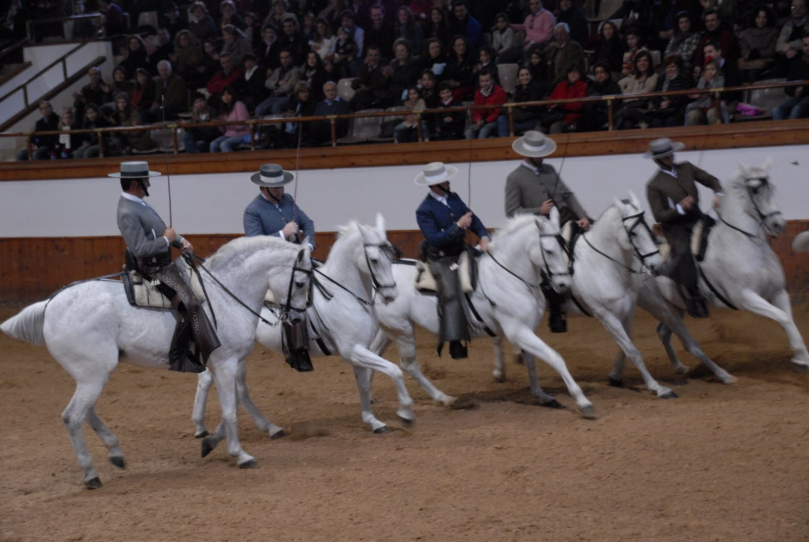 Tour 3 Jerez Wineries And Royal School Of Equestrian Art